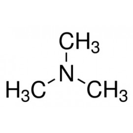 Trimethylamine - TMA
